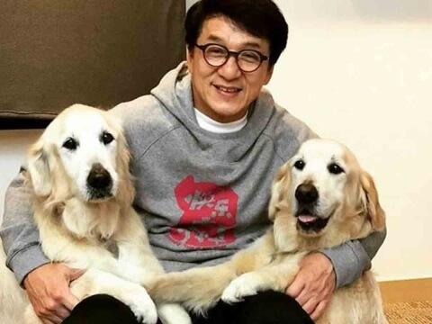 ¿Jackie Chan tiene coronavirus?, ¿Está en cuarentena?