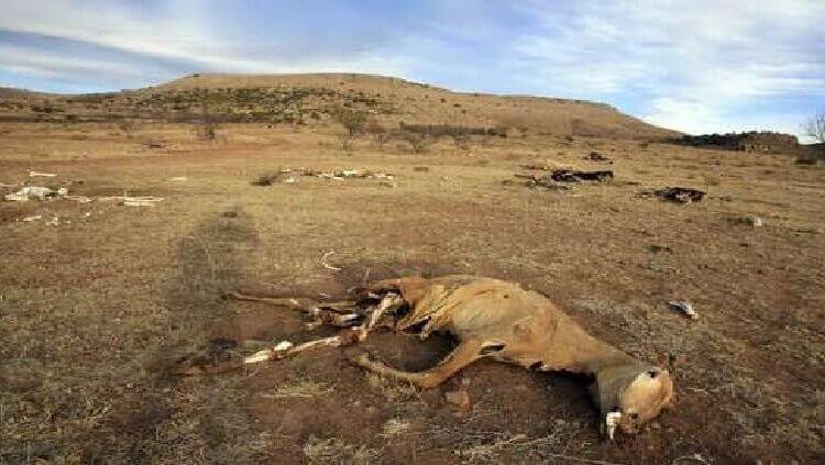 Advierte la NASA a México por grave sequía en el país